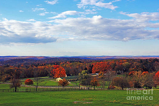 Upstate by Alison Tomich
