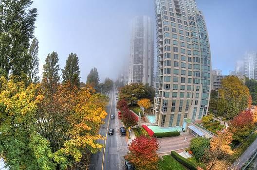 Urban Forest by Doug Farmer