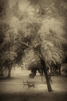 Urban park in sepia tone by Peter Fodor