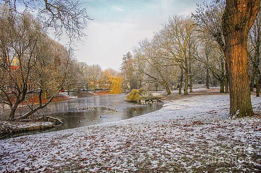 Patricia Hofmeester - Urban park in winter