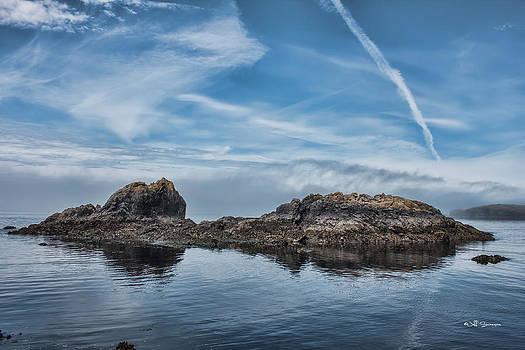 Urchin Rocks by Jeff Swanson