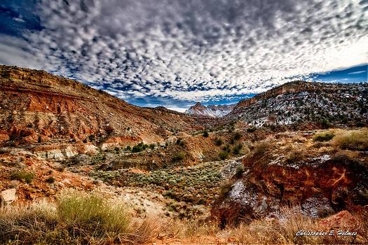 Christopher Holmes - Utah Winter Scenic