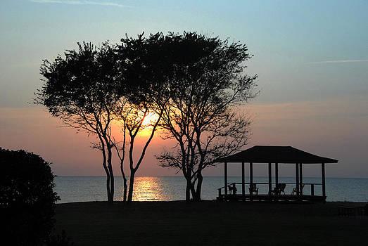 Vacation by Maneesh Chandran