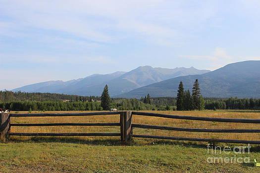 Valemont Pasture by Doreen Lambert