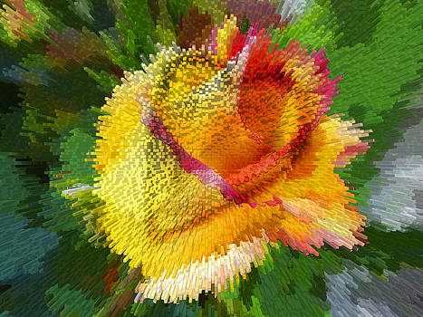 Valentine Rose by Anne Mott