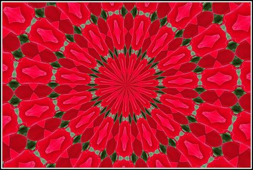 Valentines Dublin Bay Rose Mandala by Chris Keenan