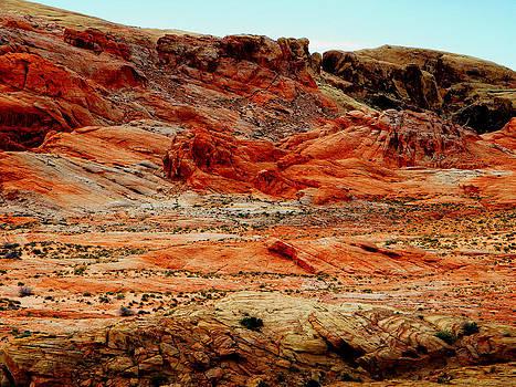 Frank Wilson - Valley Of Fire High Desert