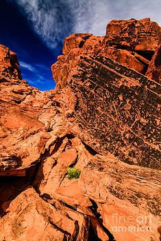 Brenda Giasson - Valley of Fire Petroglyphs