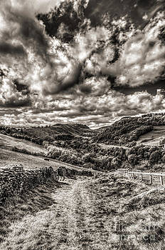 Steve Purnell - Valley View Mono
