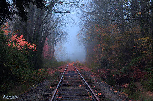 Vanishing Autumn by Sarai Rachel