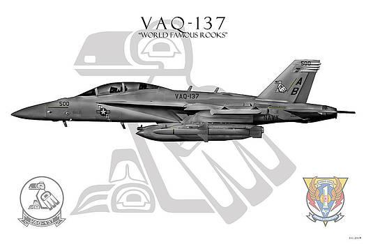 Vaq-137 2014 by Clay Greunke