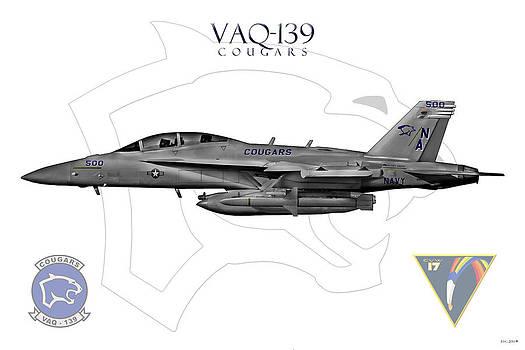 Vaq-139 2014 by Clay Greunke