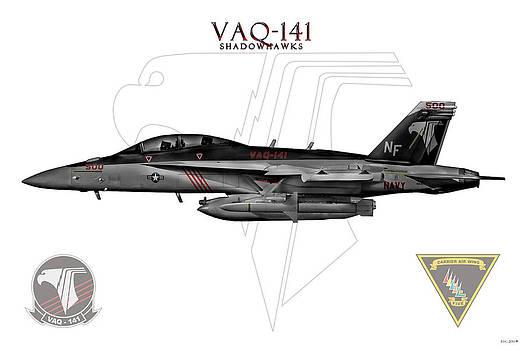 Vaq-141 2014 by Clay Greunke
