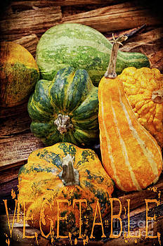 Angela Doelling AD DESIGN Photo and PhotoArt - Vegetable