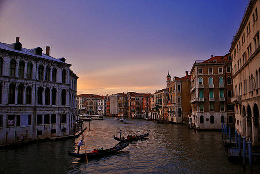 Venetian Violet by Jeff Rose