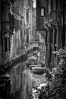 Venice Morning by Michael Carter