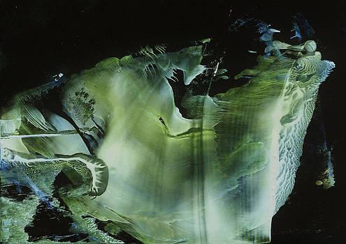 Venus subaqua by Cristina Handrabur