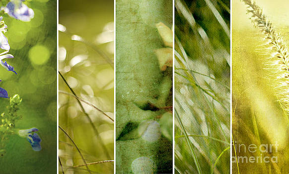 Verdant Files by Linde Townsend