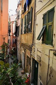 Vernazza Street by Dany Lison