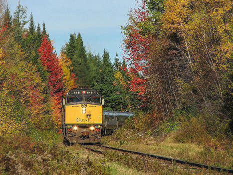 Fall Colours With Train by Steve Boyko
