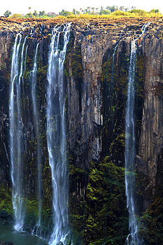 Victoria Falls South Africa  323 by Larry Roberson