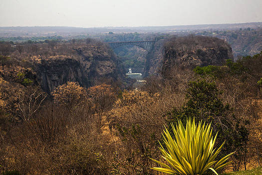 Victoria Falls South Africa  338 by Larry Roberson