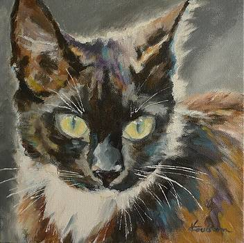 Victoria's Cat by Veronica Coulston