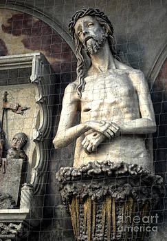 Gregory Dyer - Vienna Austria - St. Stephen