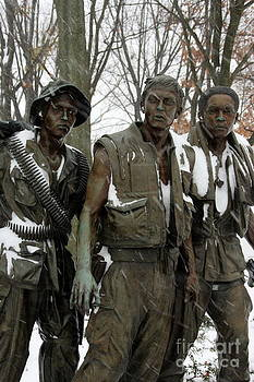 Vietnam Veterans Memorial by Andrew Romer