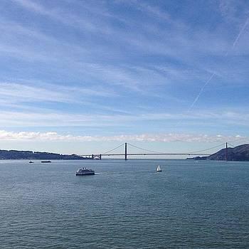 View From Alcatraz by Mandy Wiltse