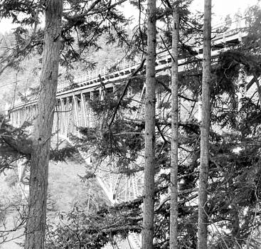 View of Deception Pass Bridge Black and White by Ann Michelle Swadener