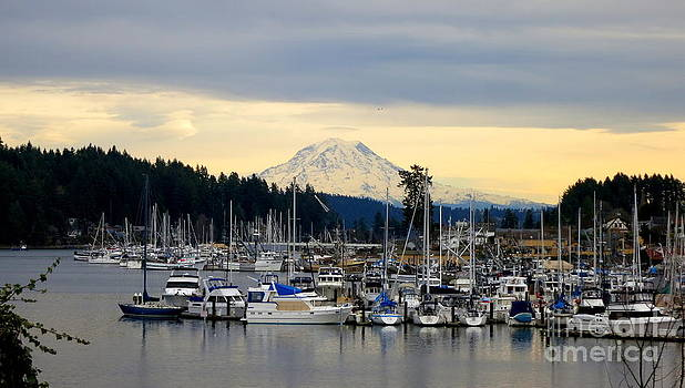 View of Mt. Rainier From Gig Harbor WA by Tanya  Searcy