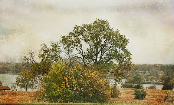 View of the Lake by Joan Bertucci