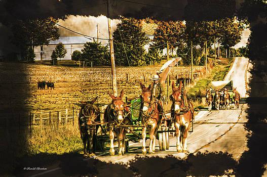 Randall Branham - View of Working Farmers