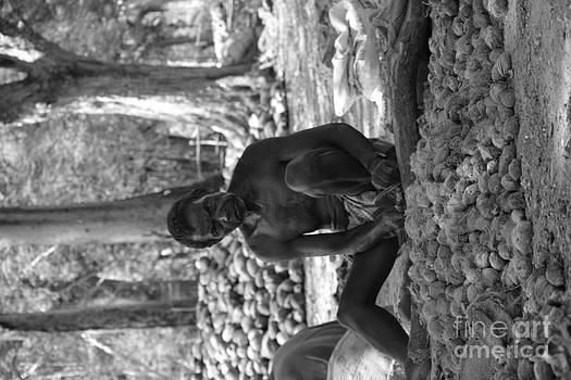 Village Farmer  by Bobby Mandal
