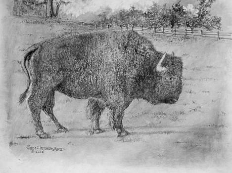 Jim Hubbard - Villages Buffalo