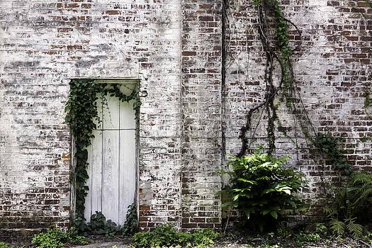 Lynn Palmer - Vine Covered Brick Wall and Door