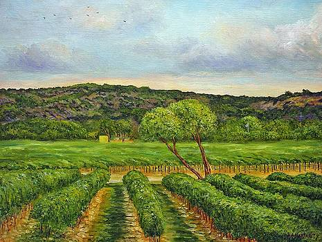 Vineyard  by Andries Hartholt