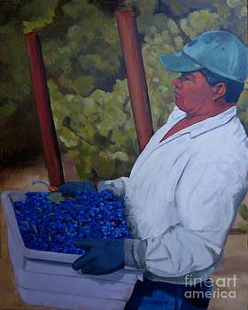 Vineyard Harvest III by Donna Schaffer