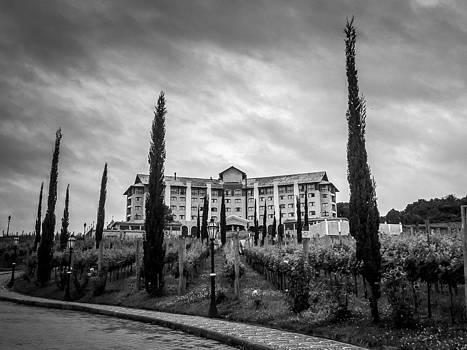 Vineyards and Chateau-BW by Fabio Giannini