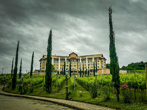 Vineyards and Chateau by Fabio Giannini