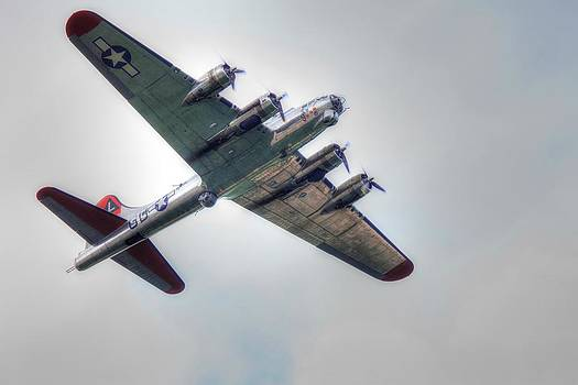 Vintage Aircraft by Teresa Moore