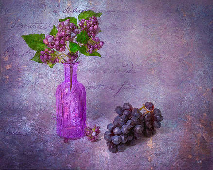 Vintage Grapes by Michael Petrizzo