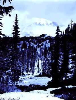 Vintage Mount Rainier Forest early 1900 era... by Eddie Eastwood