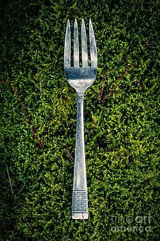 Edward Fielding - Vintage silver fork on moss