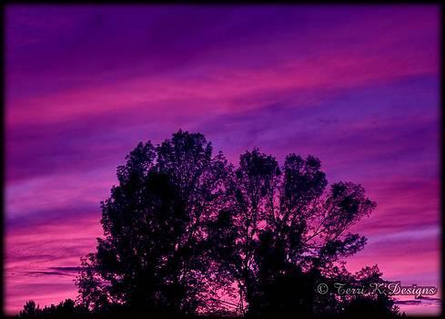 Violet Sky by Terri K Designs
