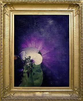 Violete by Lilioara Macovei