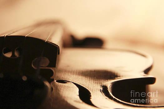 Violin by Angelina W