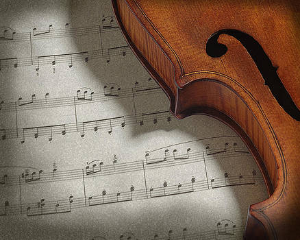 Violin by Krasimir Tolev