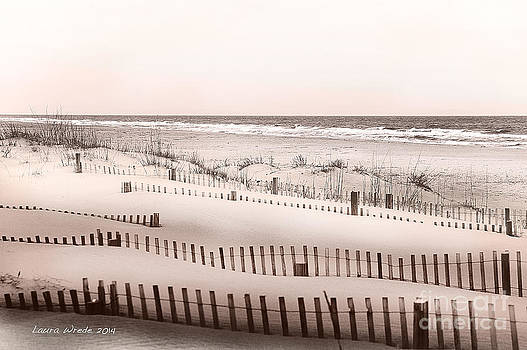 Virgina Beach Vacation Memories by Artist and Photographer Laura Wrede